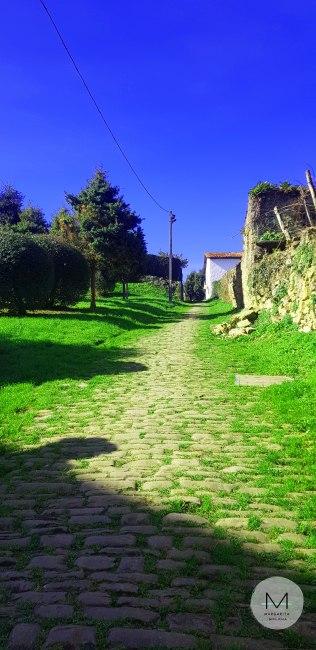 Camino-desde-Getaria